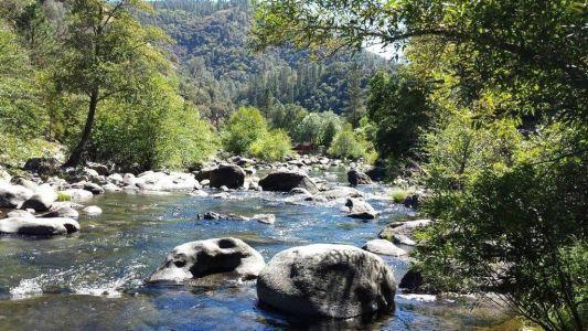 River Picture 2
