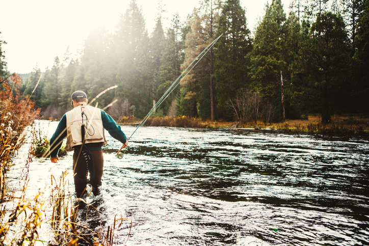 Novice Fisherman? These Tips Can Help!