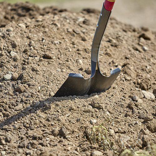shovel in dirt pile